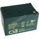 akumulátor 12V 12Ah CSB EVX12120 F2